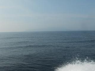 804fca6ec1 港を出て直ぐにミズモチらしいナブラが見えます。 ワカシか? 船はそんなの無視してどんどん沖へ急ぎます。 今日は漂流物もほとんどない状況です。
